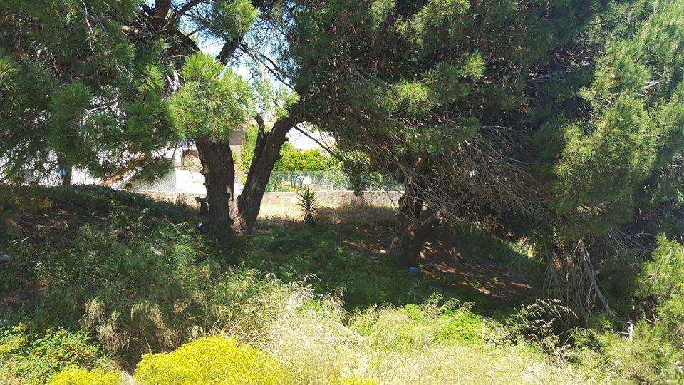 Terreno para comprar, Charneca de Caparica e Sobreda, Almada, Setúbal - Foto 9