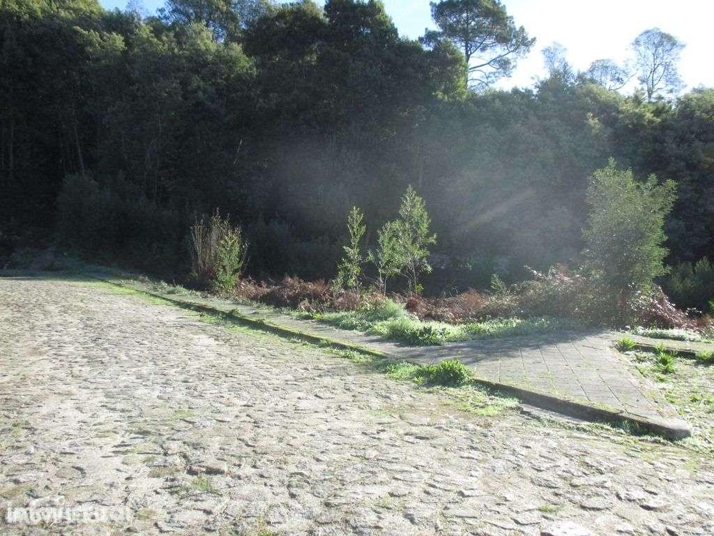 Terreno para comprar, Afife, Viana do Castelo - Foto 3