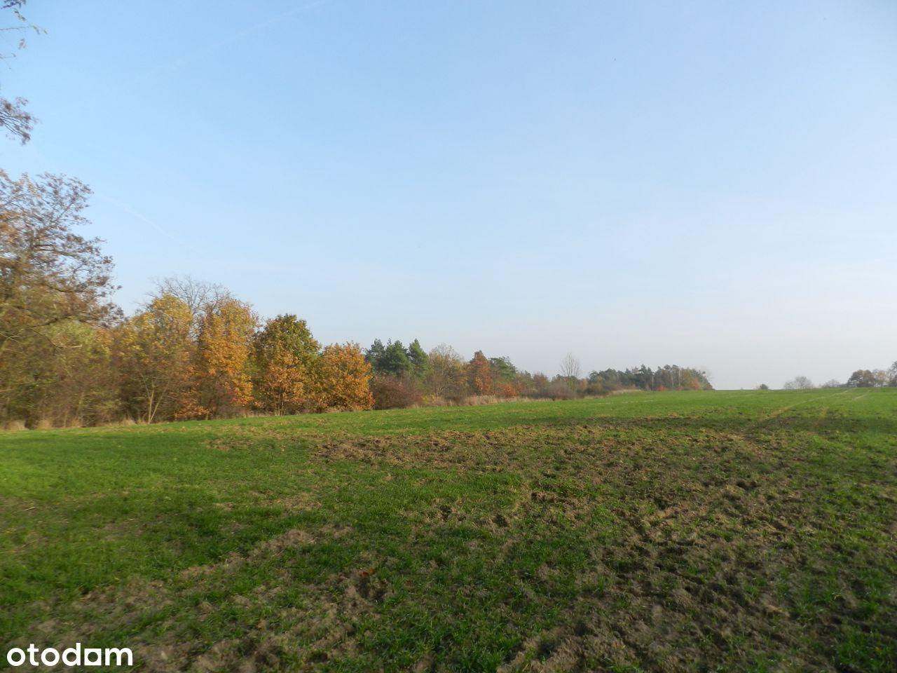 Działka rolna w Wawrowie