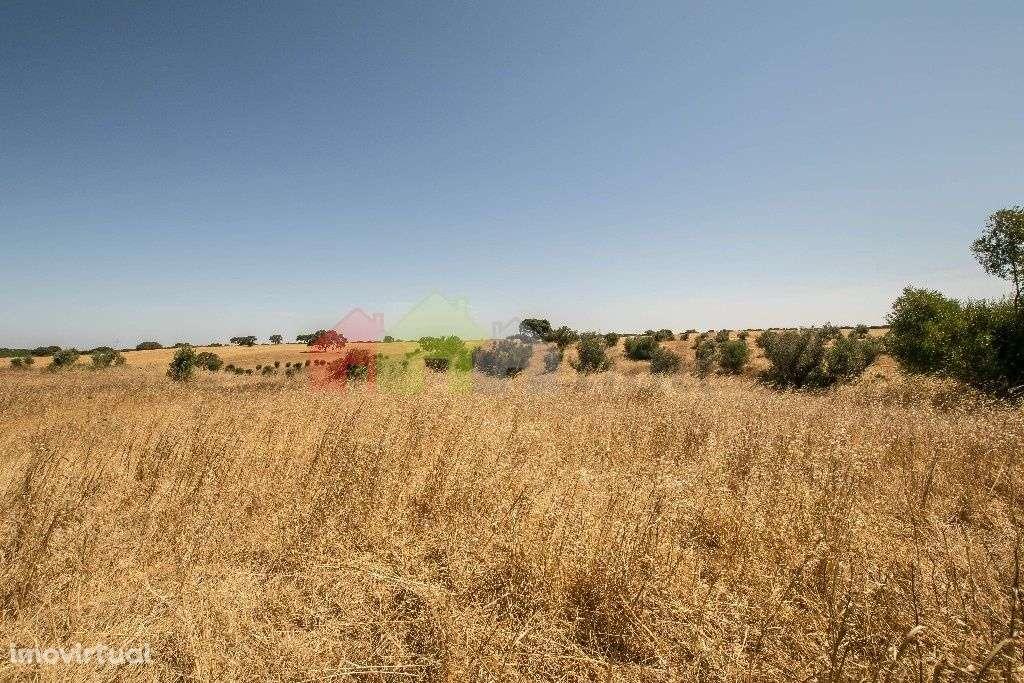 Terreno para comprar, Messejana, Aljustrel, Beja - Foto 4