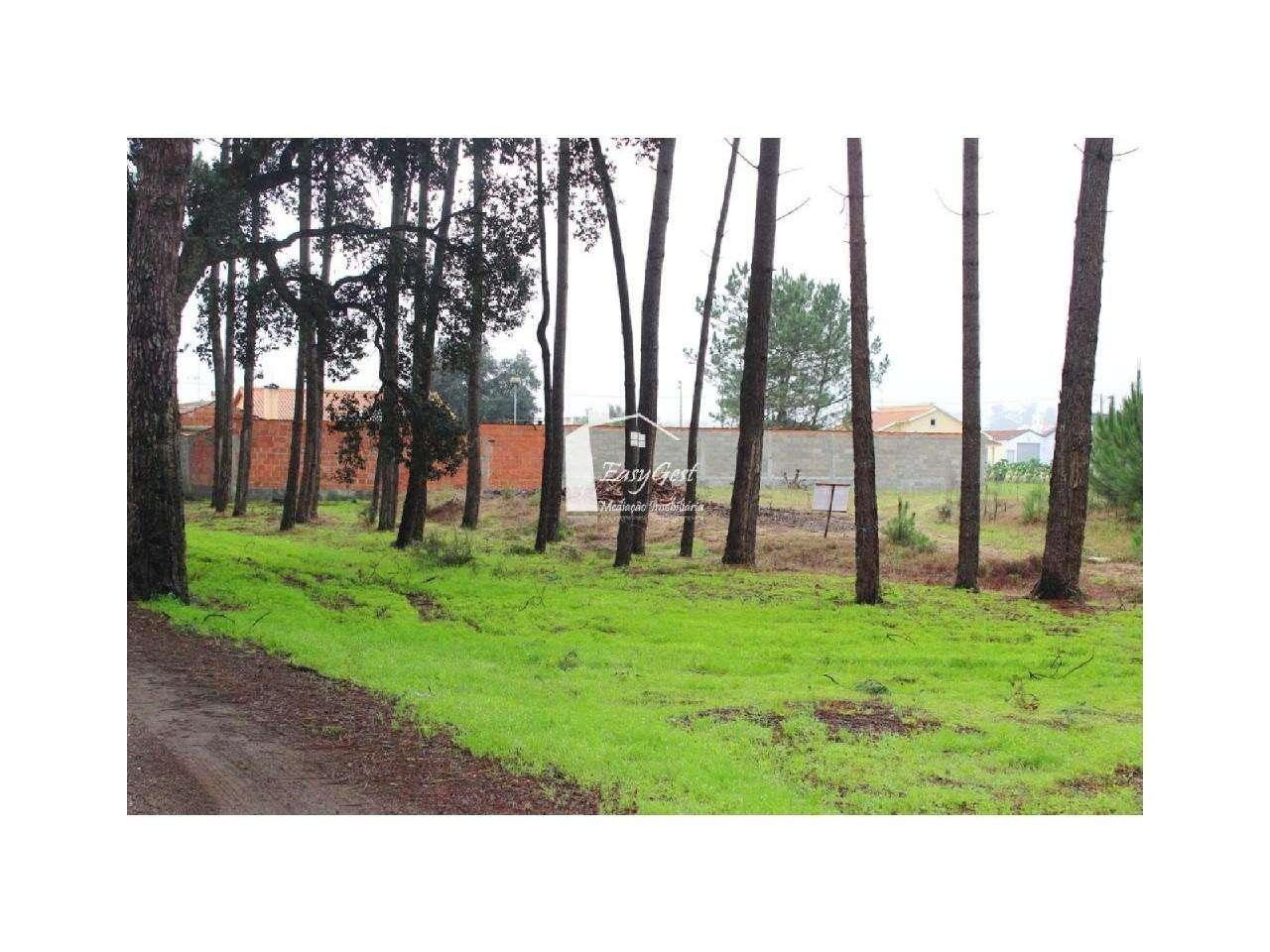 Terreno para comprar, Monte Redondo e Carreira, Leiria - Foto 18