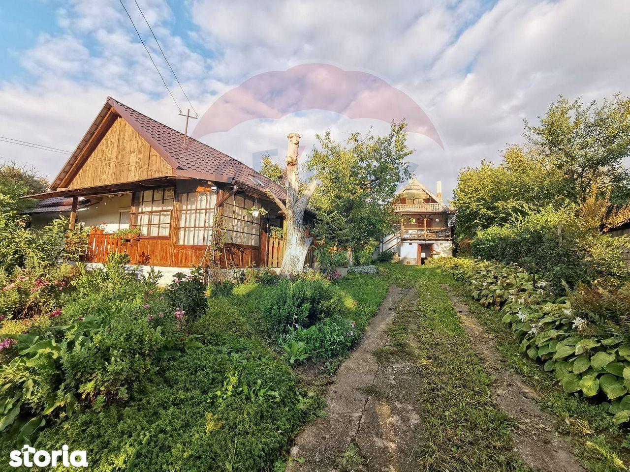 2 case de vanzare pe un teren de 40 de arii, Viile Satu Mare