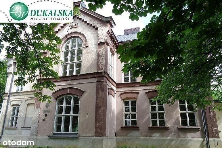 Sosnowiec, zabytkowy pałac idealny pod inwestycję