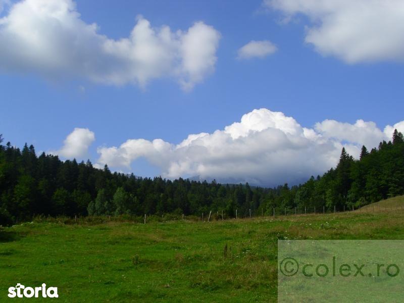 Teren de vanzare Valea Rasnoavei