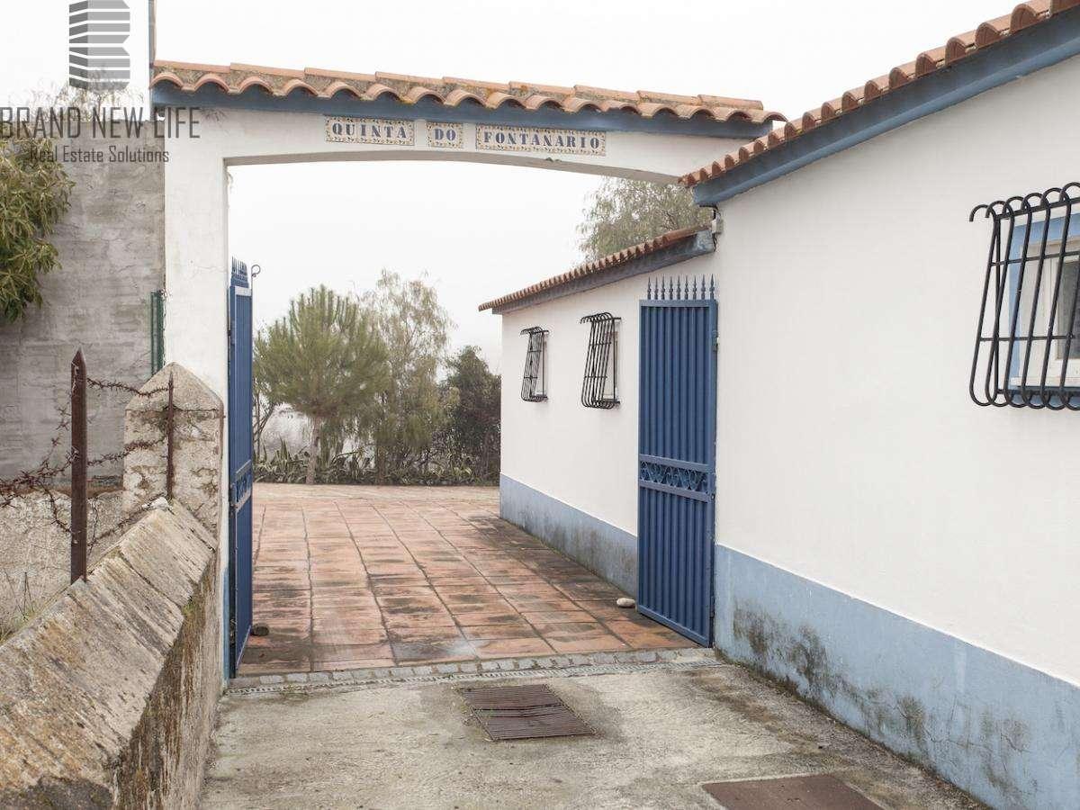 Quintas e herdades para comprar, Benavila e Valongo, Portalegre - Foto 31