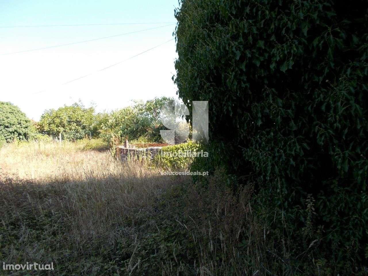 Terreno para comprar, Oliveirinha, Aveiro - Foto 3
