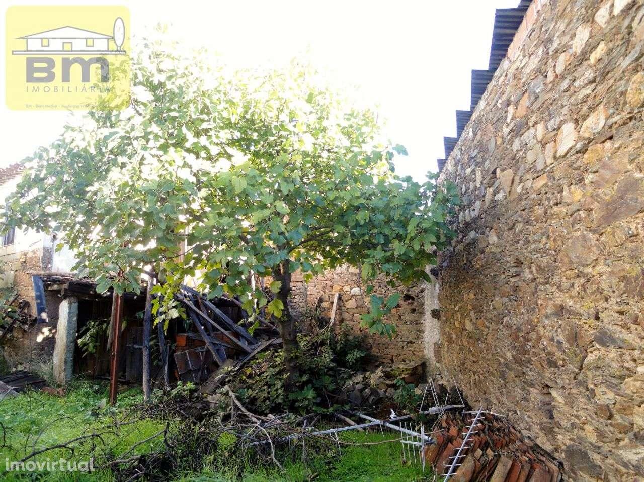 Moradia para comprar, Almaceda, Castelo Branco - Foto 11