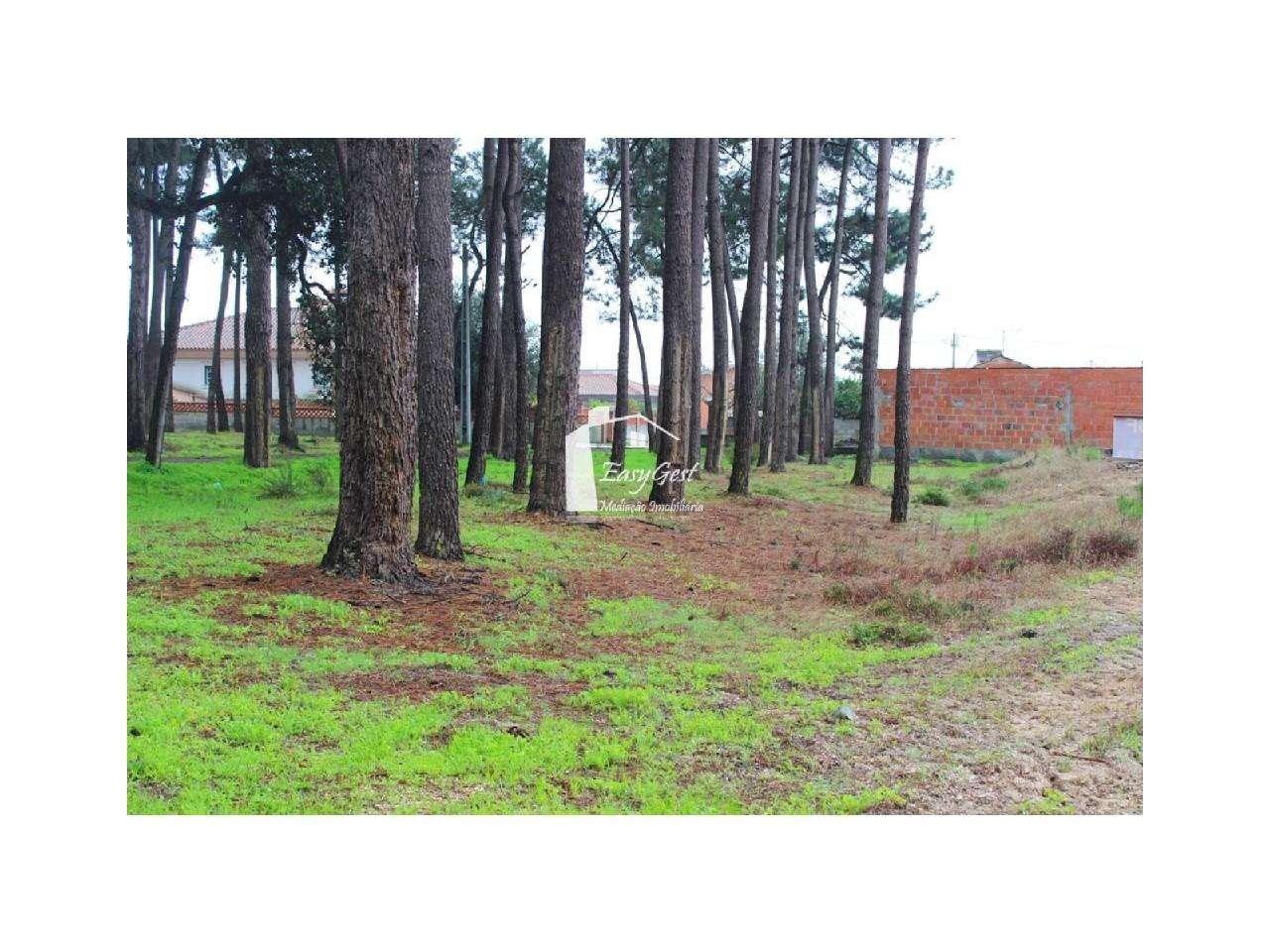 Terreno para comprar, Monte Redondo e Carreira, Leiria - Foto 9