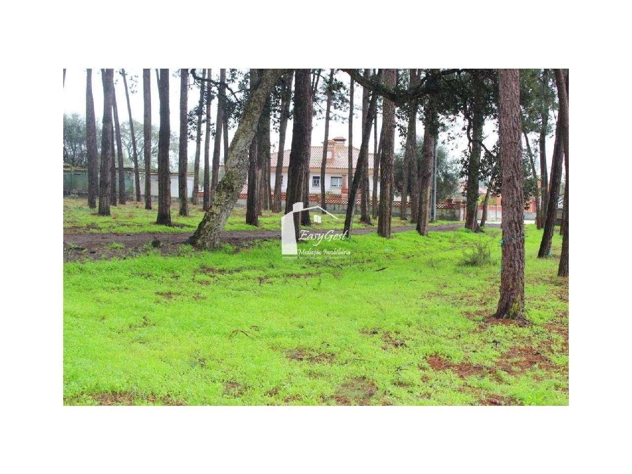 Terreno para comprar, Monte Redondo e Carreira, Leiria - Foto 13