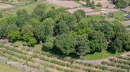 Quintas e herdades para comprar, Termas de São Vicente, Penafiel, Porto - Foto 28