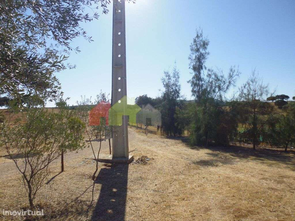 Quintas e herdades para comprar, Vila Verde de Ficalho, Beja - Foto 14
