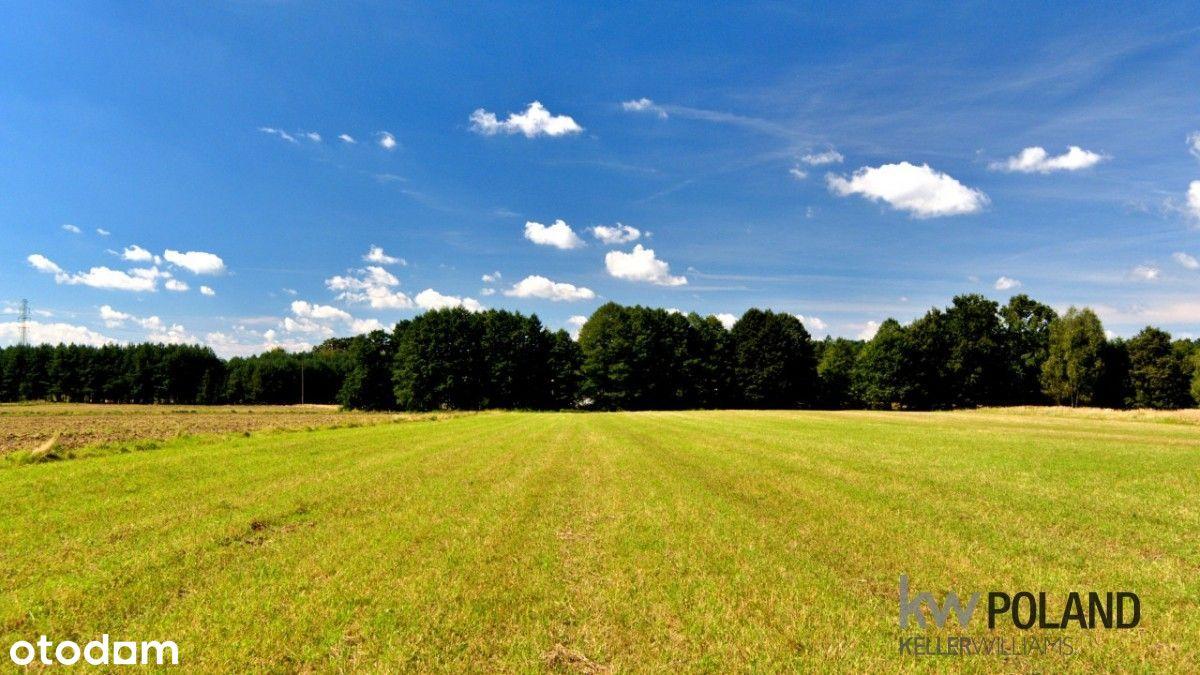 Gostyń, działka rolno-zagrodowa blisko lasu