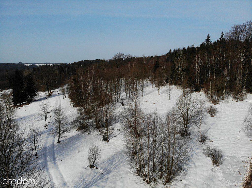 Działka w lesie z możliwością zabudowy