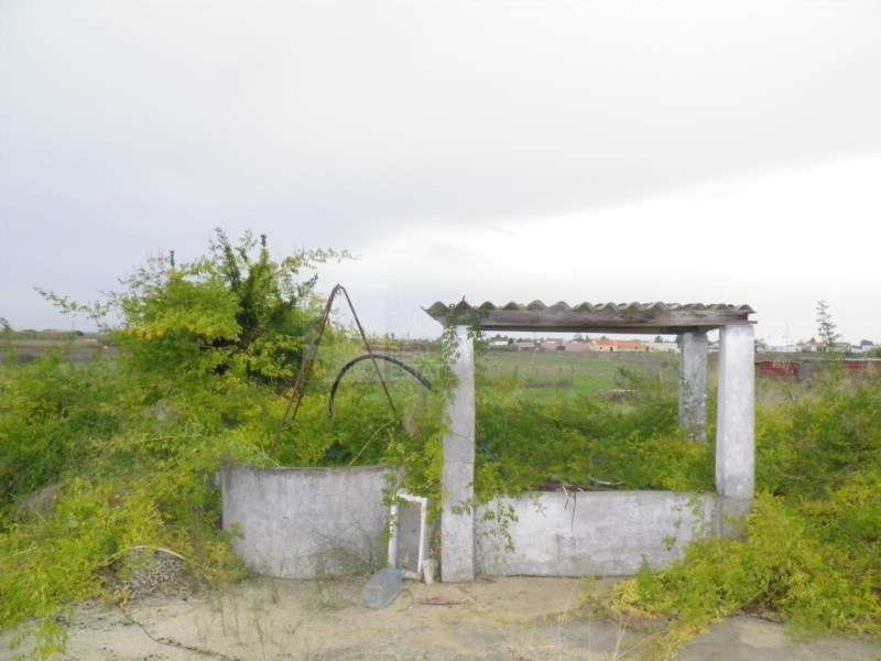 Quintas e herdades para comprar, Poceirão e Marateca, Setúbal - Foto 5