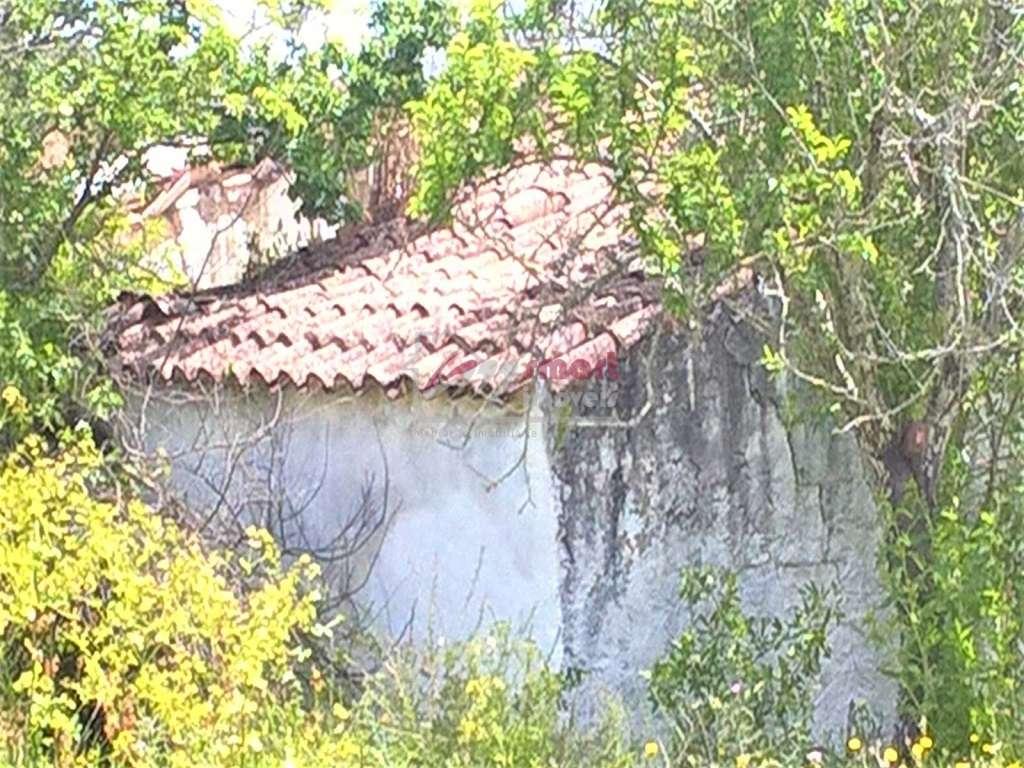 Quintas e herdades para comprar, Conceição e Estoi, Faro - Foto 2