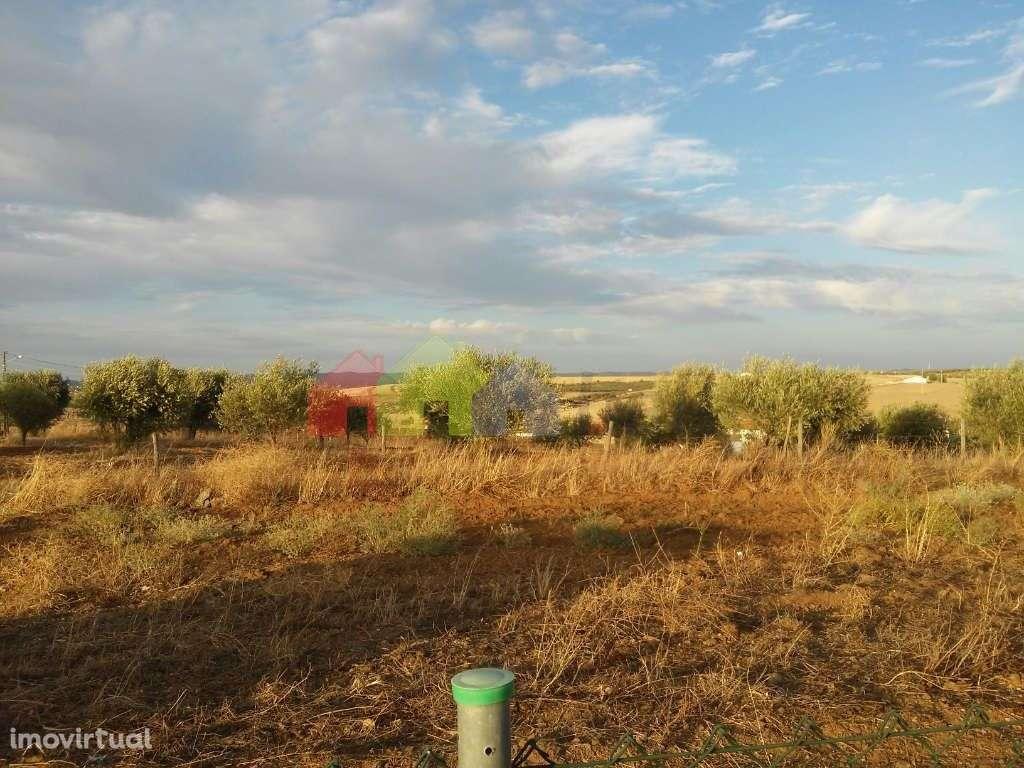 Quintas e herdades para comprar, Selmes, Vidigueira, Beja - Foto 15