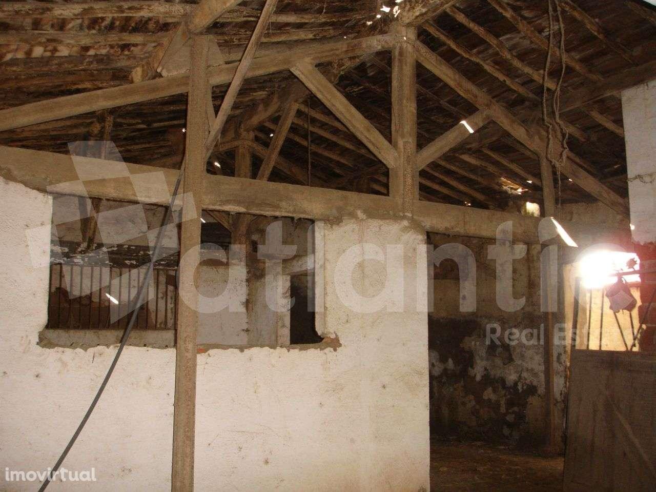 Quintas e herdades para comprar, Beja (Salvador e Santa Maria da Feira), Beja - Foto 44