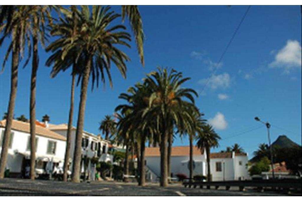 Terreno para comprar, Porto Santo - Foto 7