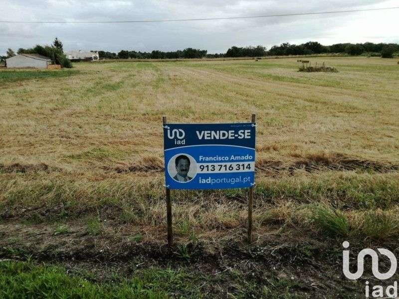Terreno para comprar, Landeira, Évora - Foto 2