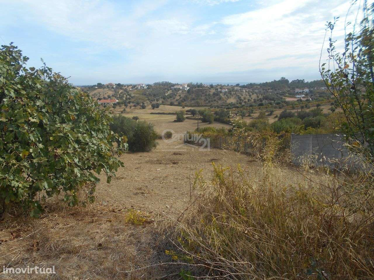 Terreno para comprar, Brogueira, Parceiros de Igreja e Alcorochel, Torres Novas, Santarém - Foto 2