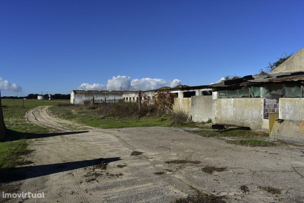 Terreno para comprar, Estrada Nacional 4, Atalaia e Alto Estanqueiro-Jardia - Foto 4