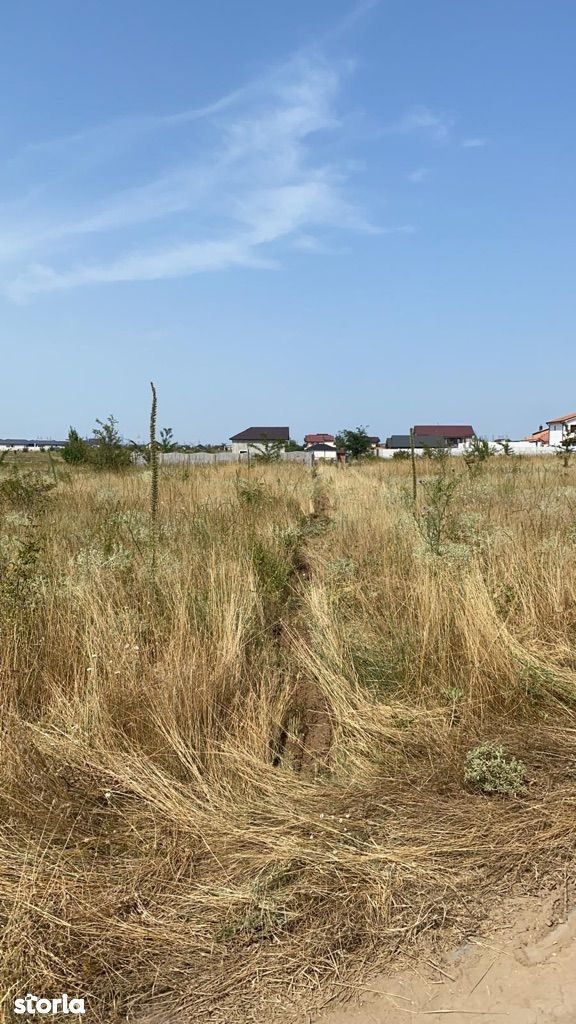 Parcele 333 mp Zona Ford -Căpșunărie preț 14 500 euro