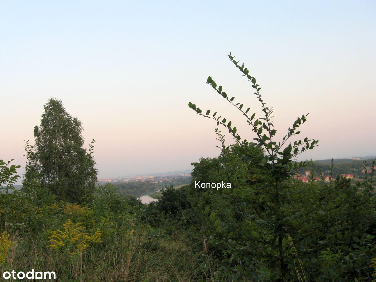 Z widokiem na Kraków i Wisłę