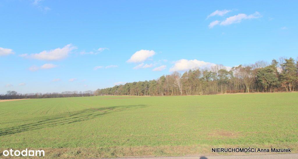 Działka inwestycyjna w Nelki