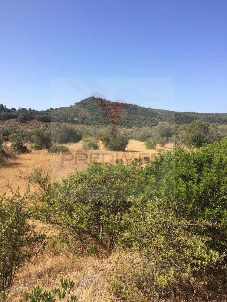 Quintas e herdades para comprar, Salir, Faro - Foto 7