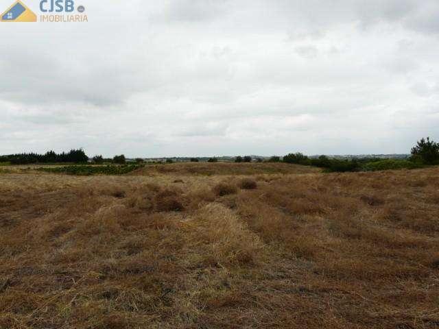 Terreno para comprar, Benavente - Foto 4