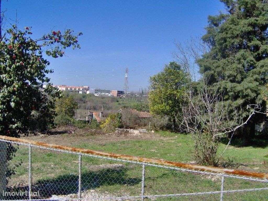 Quintas e herdades para comprar, Palmeira, Braga - Foto 7