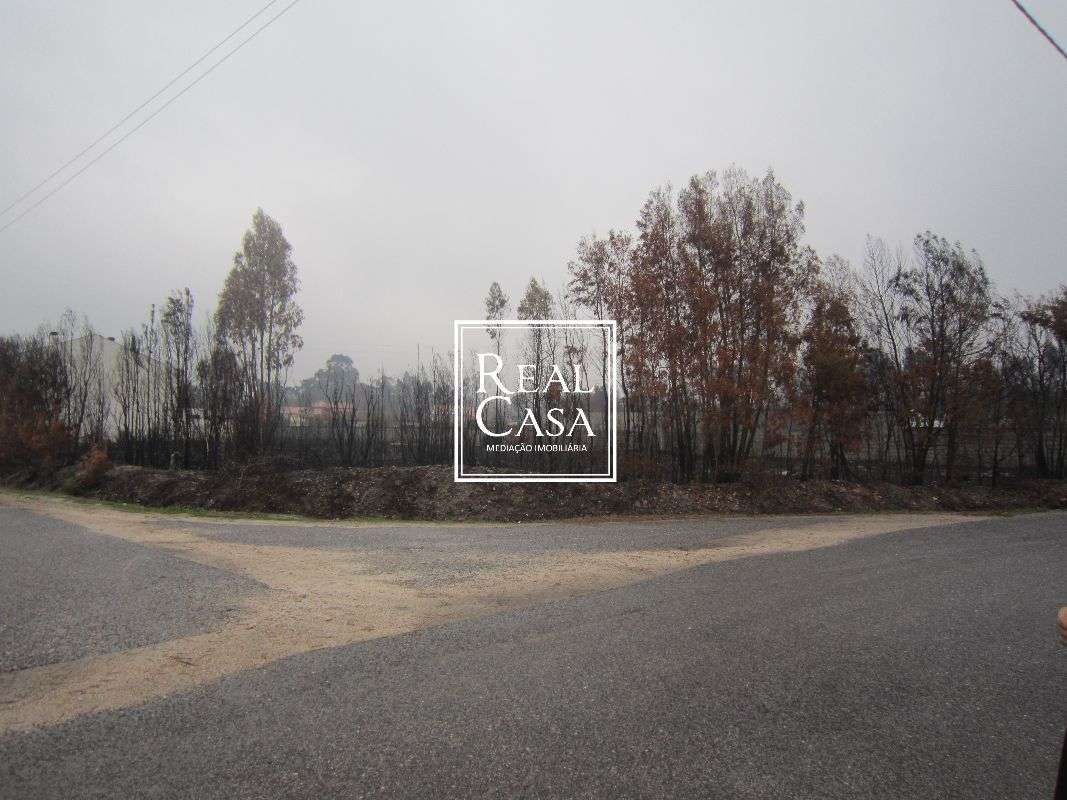 Terreno para comprar, Mira - Foto 1