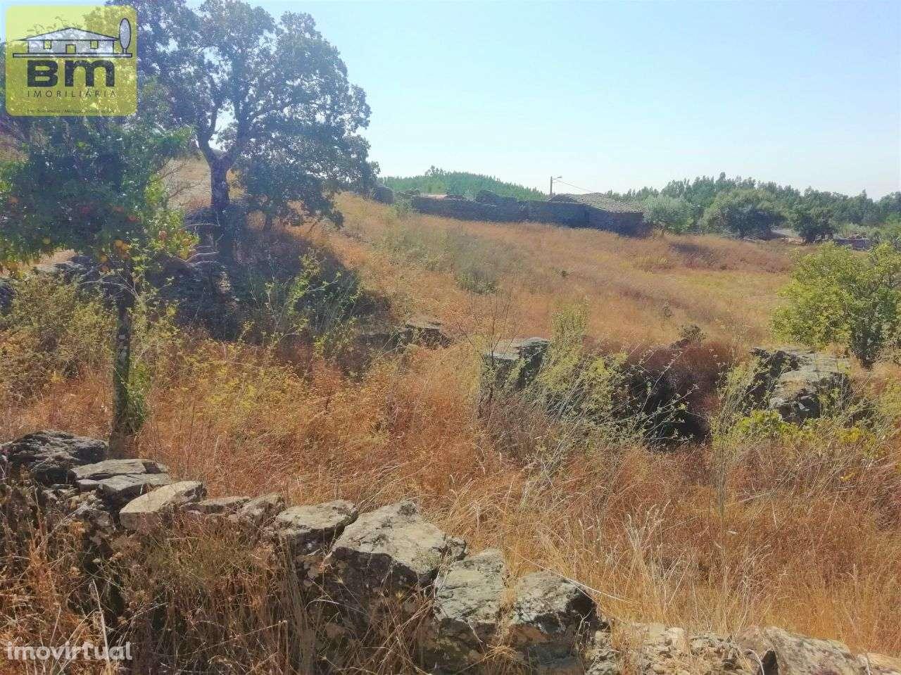 Quintas e herdades para comprar, Fratel, Vila Velha de Rodão, Castelo Branco - Foto 13
