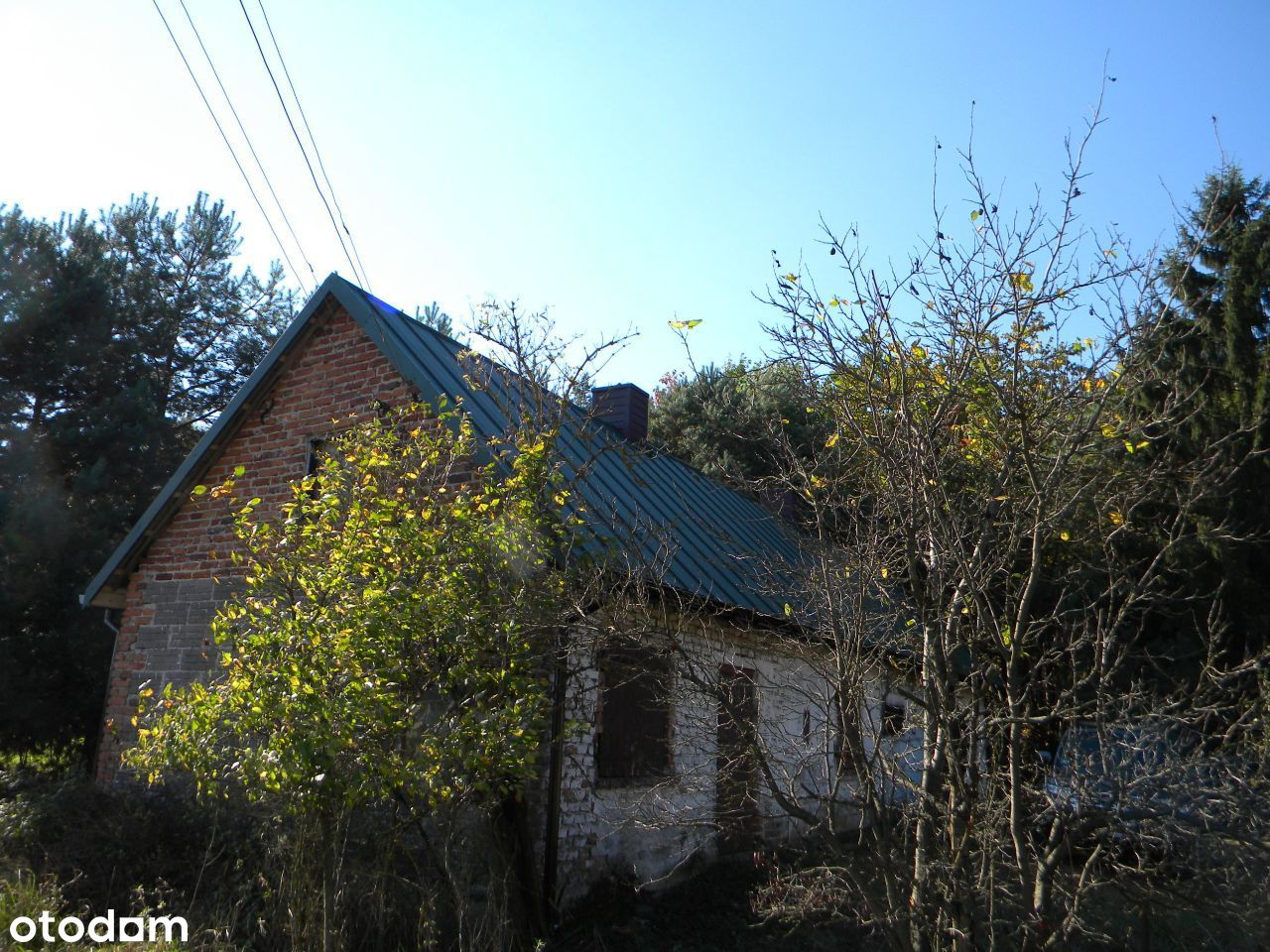 Bełchatów okolice dom pod lasem /leśniczówka/