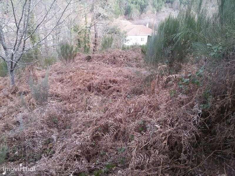 Quintas e herdades para comprar, Bornes de Aguiar, Vila Real - Foto 11