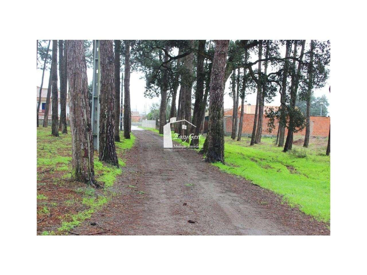 Terreno para comprar, Monte Redondo e Carreira, Leiria - Foto 22