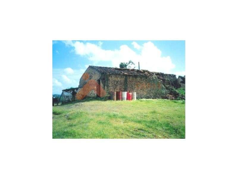 Terreno para comprar, São Bartolomeu de Messines, Faro - Foto 3