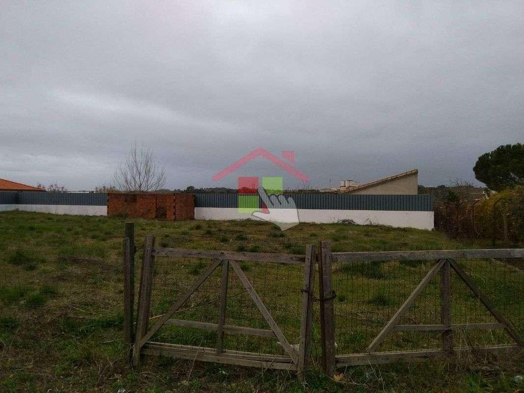 Terreno para comprar, Torres Novas (Santa Maria, Salvador e Santiago), Torres Novas, Santarém - Foto 4