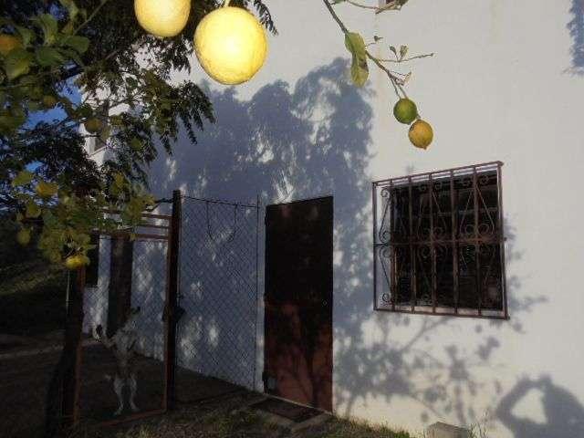 Quintas e herdades para comprar, Mexilhoeira Grande, Portimão, Faro - Foto 12