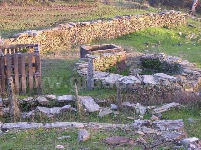 Terreno para comprar, Almaceda, Castelo Branco - Foto 5