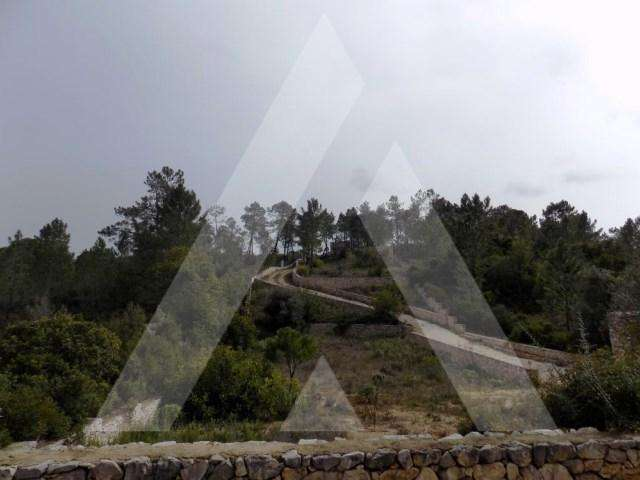 Terreno para comprar, Paderne, Faro - Foto 1