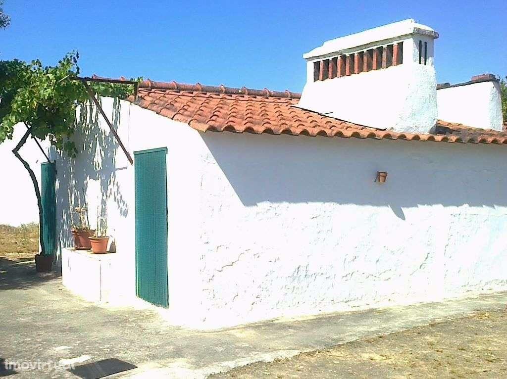 Quintas e herdades para comprar, Ponte de Sor, Tramaga e Vale de Açor, Portalegre - Foto 5