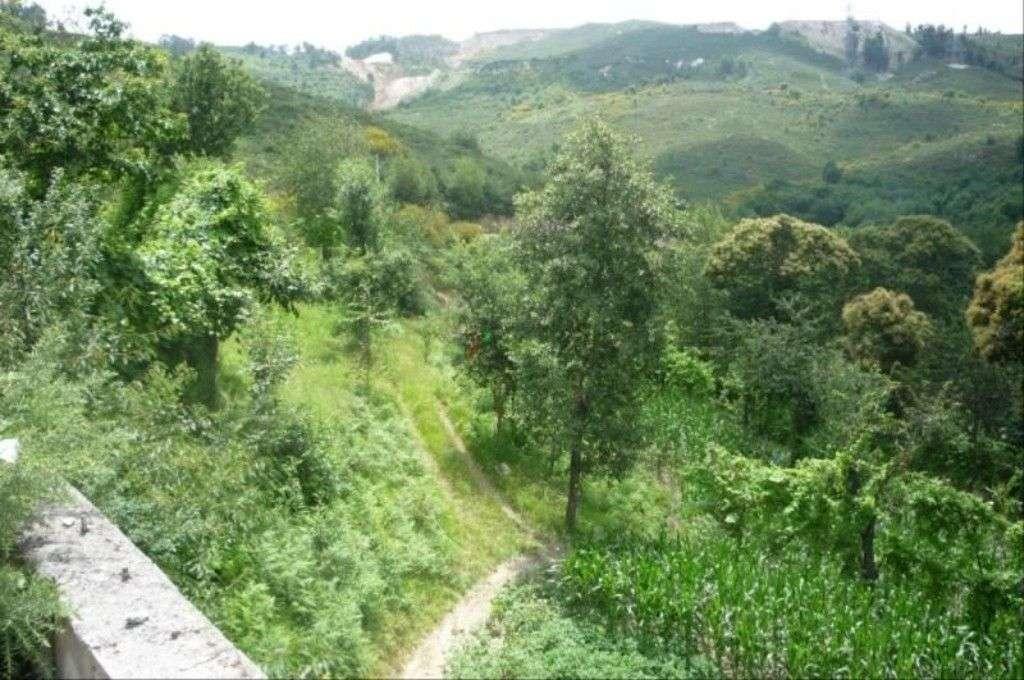 Terreno para comprar, Santa Lucrécia de Algeriz e Navarra, Braga - Foto 2