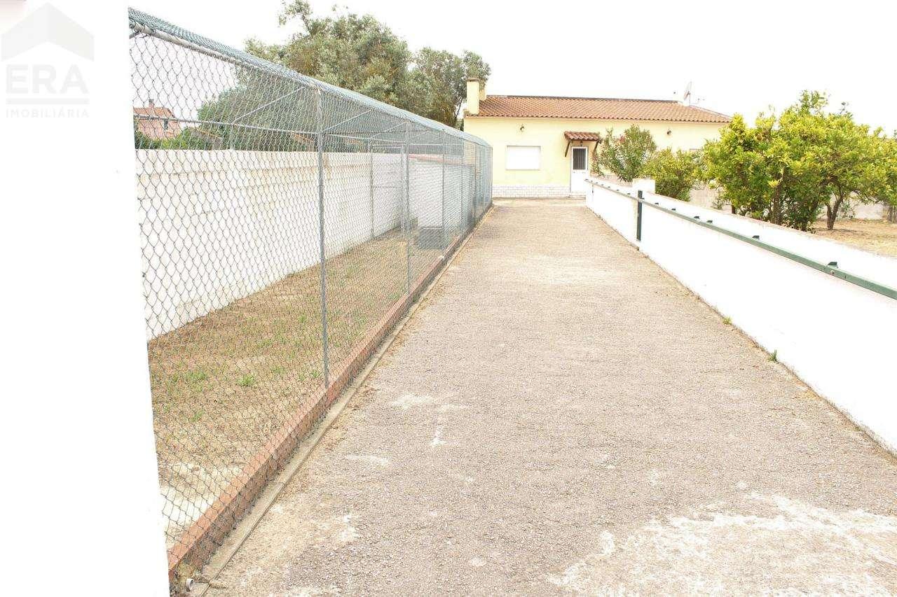 Terreno para comprar, Gâmbia-Pontes-Alto Guerra, Setúbal - Foto 24