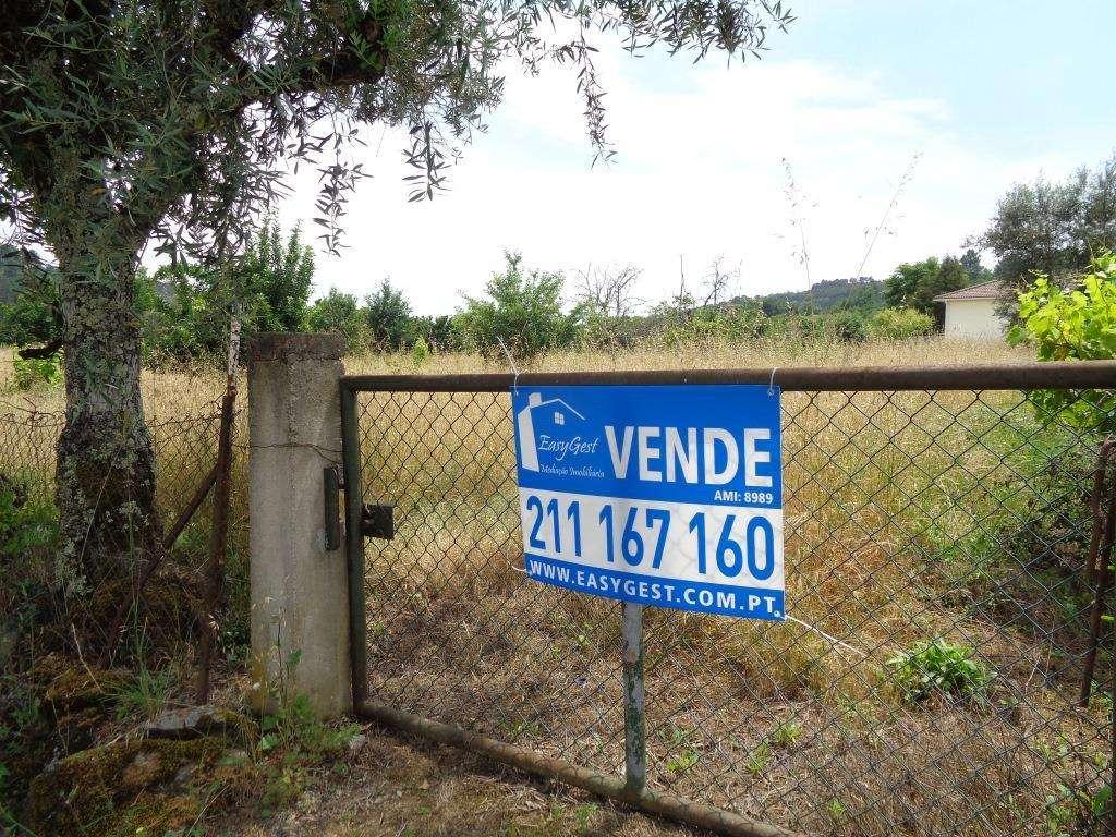 Terreno para comprar, Orgens, Viseu - Foto 1