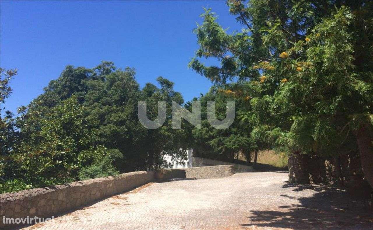 Quintas e herdades para comprar, Colares, Lisboa - Foto 6