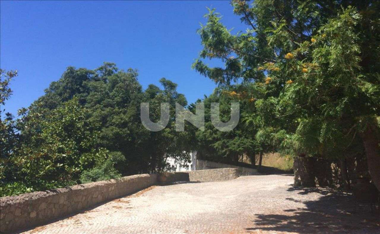 Quintas e herdades para comprar, Colares, Sintra, Lisboa - Foto 6