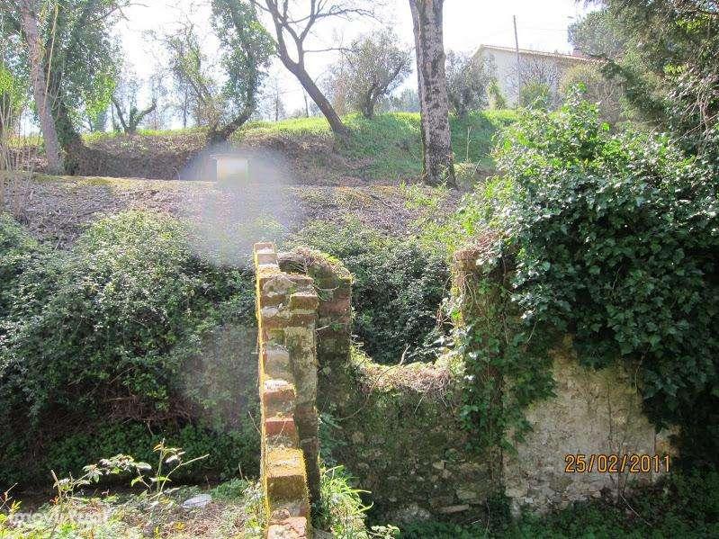Terreno para comprar, Coz, Alpedriz e Montes, Leiria - Foto 42