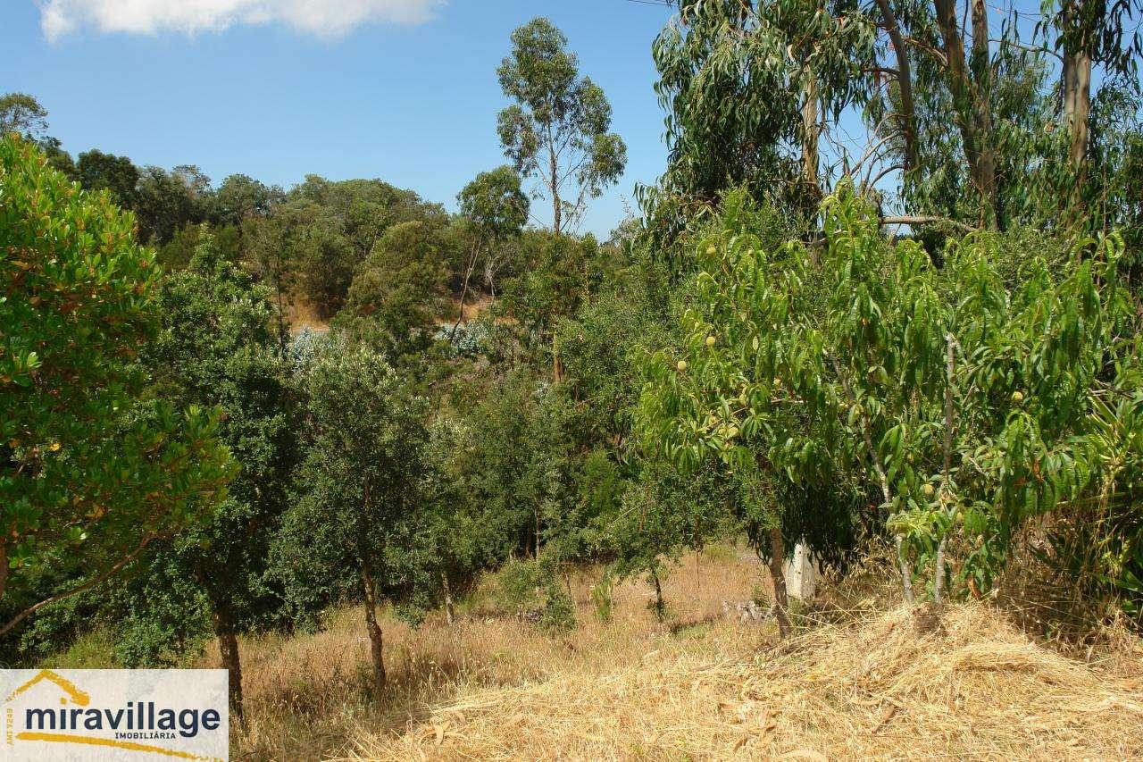 Quintas e herdades para comprar, São Teotónio, Beja - Foto 27