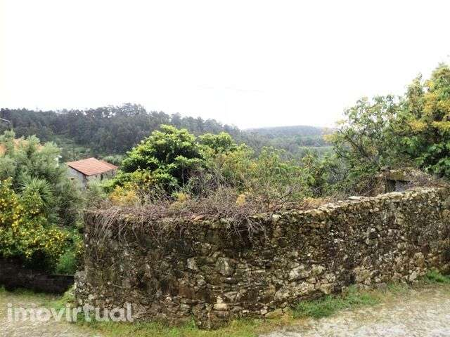 Quintas e herdades para comprar, Montaria, Viana do Castelo - Foto 7